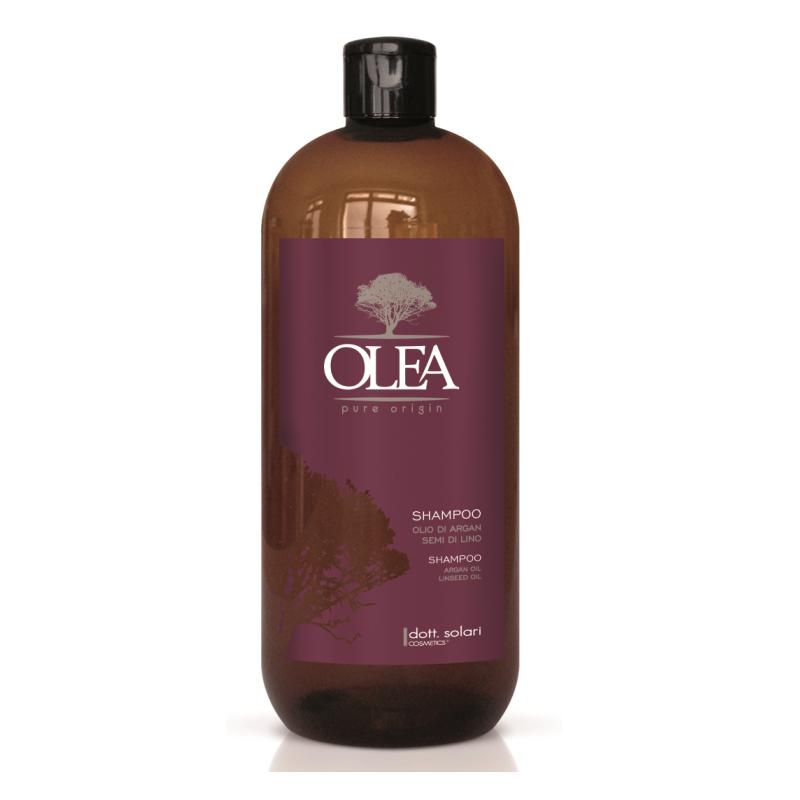 Arganový přírodní šampon bez SLES - Argan and Linseed oil Shampoo