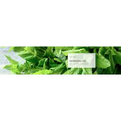 Energizing shampoo PHITOcomplex 250ml - energizační šampon proti padání vlasů s účinnou patentovanou složkou Redensyl®