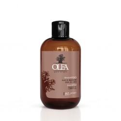 Olea Baobab Shampoo 250ml - přírodní regenerační a hydratační  šampon bez parabenů s oleji Baobab a Linseed Oil